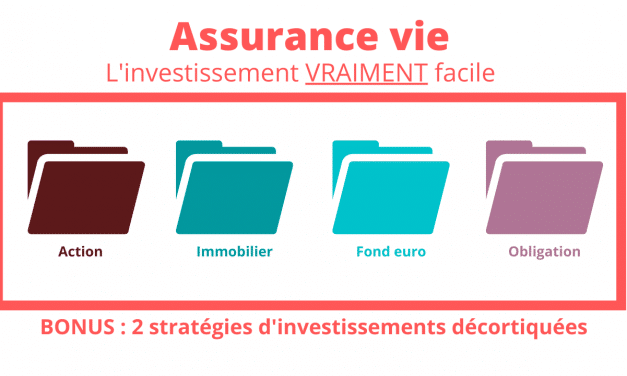 Assurance vie : le plus simple des investissements + 3 stratégies d'investissements [MISE A JOUR]