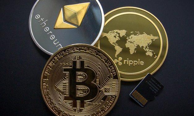 Alternatives au Bitcoin en 2021 : 7 Altcoins prometteuses