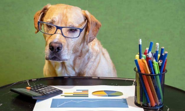 Les Dogs Of The Dow superforment (+3%) le Dow Jones – Stratégie Bourse
